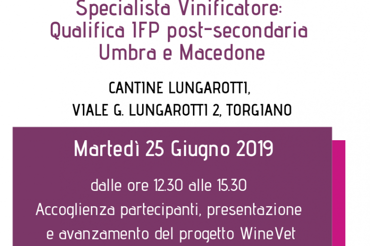 Winevet at Lungarotti cellar